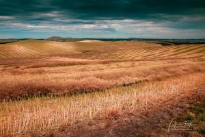 Under Storm Clouds | Beveridge, Victoria