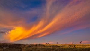 Skywaves | Clarkfield, Victoria