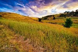 Grasslands | Clarkefield, Victoria