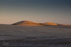 Last Rays | Bald Hill, Victoria