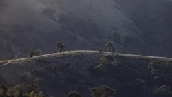 Silver-Dawn-Ridge-scaled