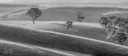 Mickleham Hills Panorama
