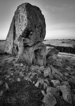 Stone-Monster-Mono